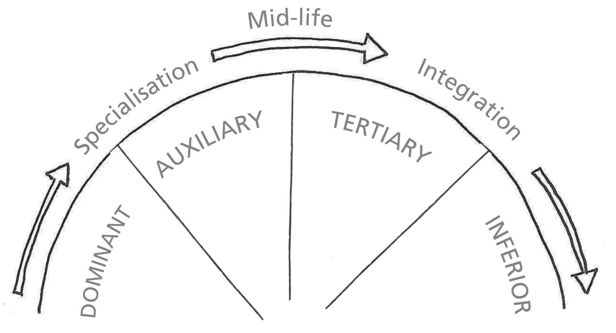 Jung's lifecycle from specialisation to midlife