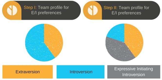 MBTI EI profile make up