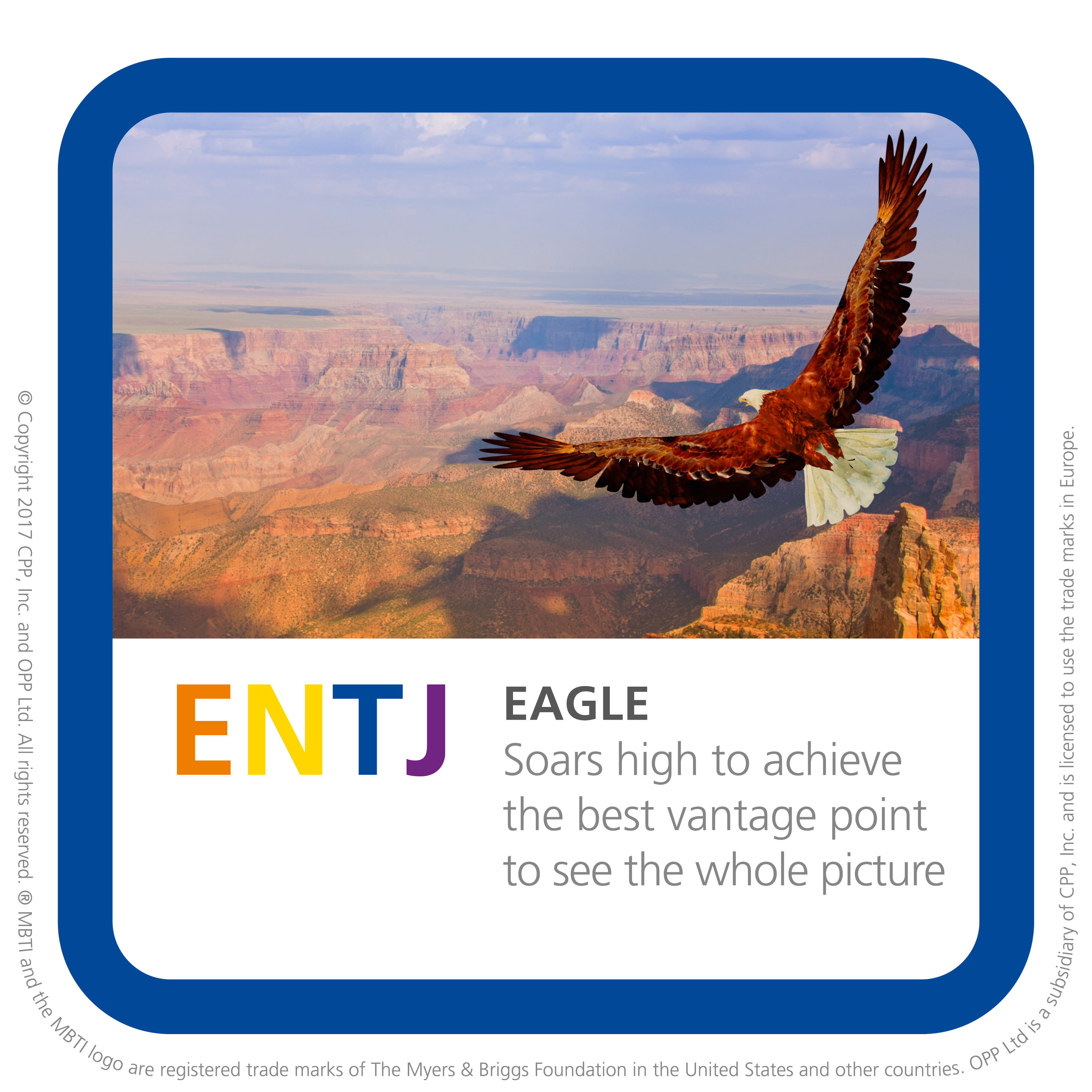 ENTJ Personality Profile – Myers Briggs (MBTI) Personality Types
