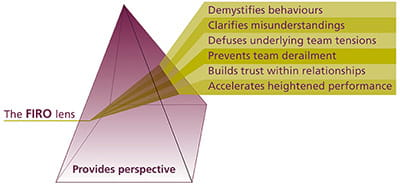 FIRO prism diagram
